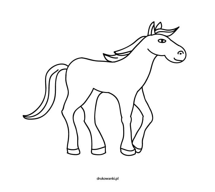 koń kolorowanka
