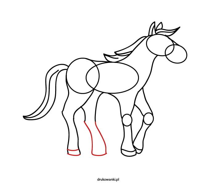 koń rysunek