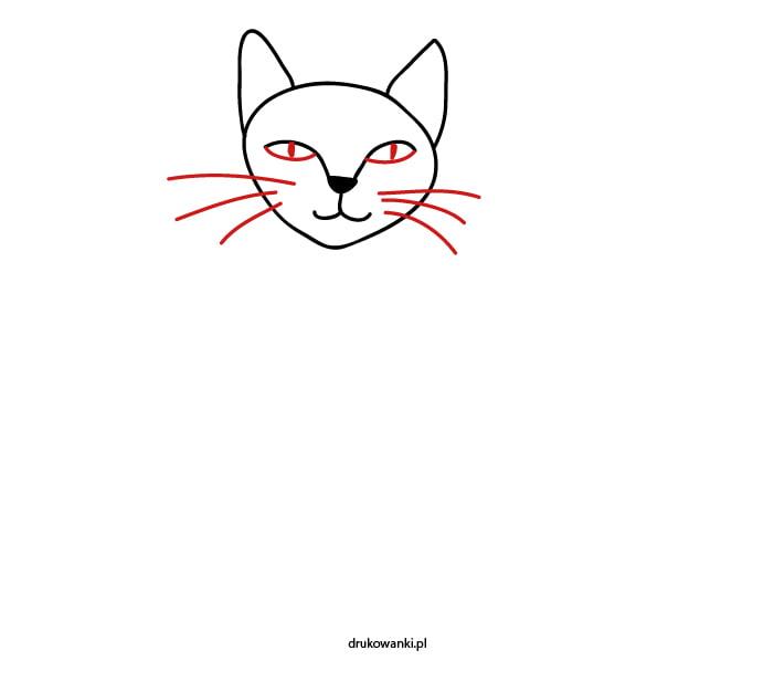 jak narysować głowę kota