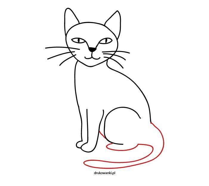 naucz się rysować kota