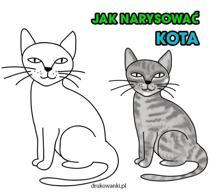 jak narysować kota krok po kroku