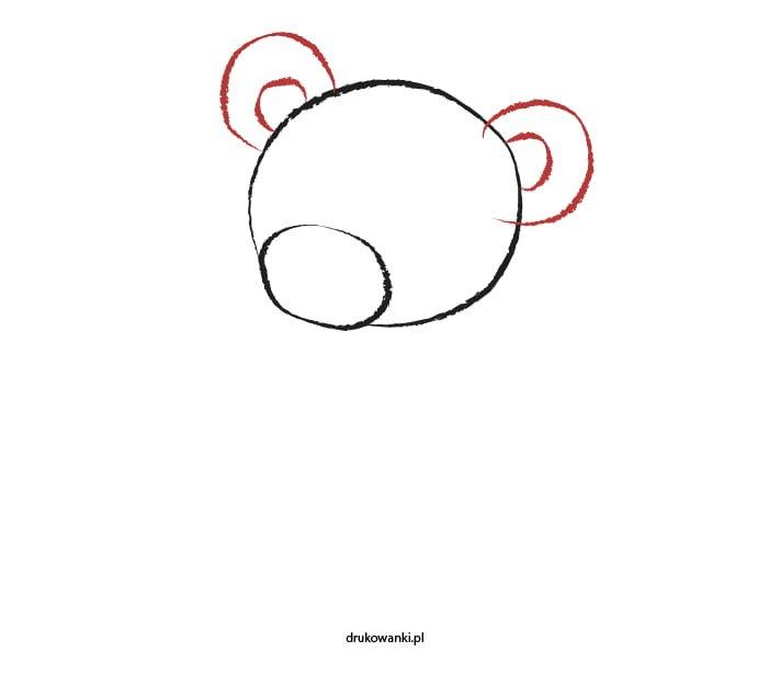 jak narysować misia instrukcja dla dzieci
