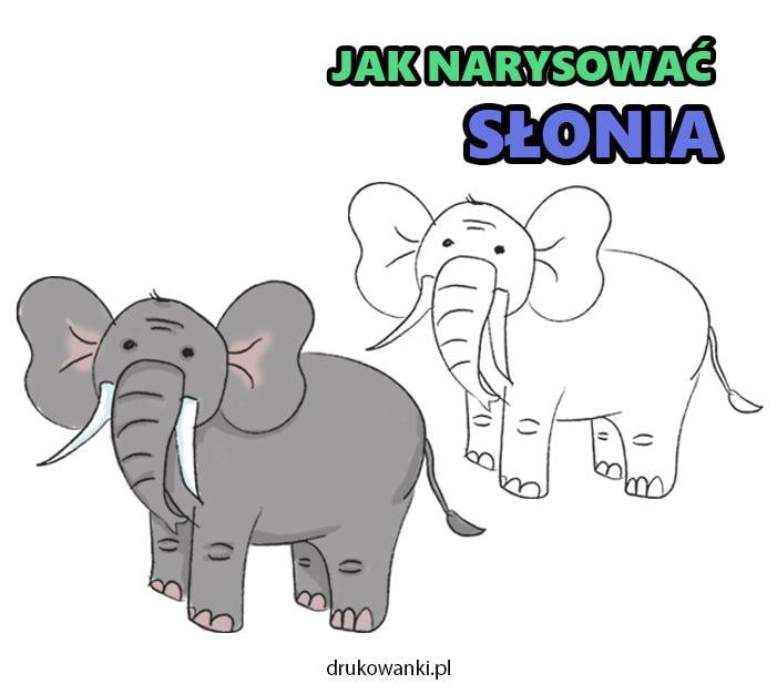 jak narysować słonia instrukcja