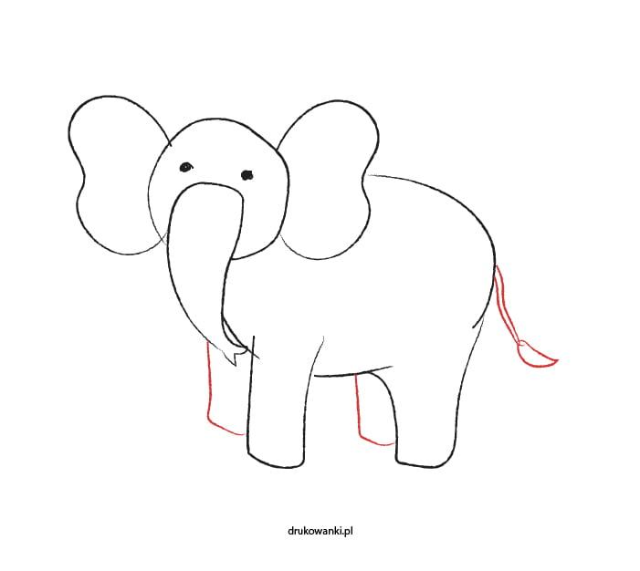 słonik rysunek