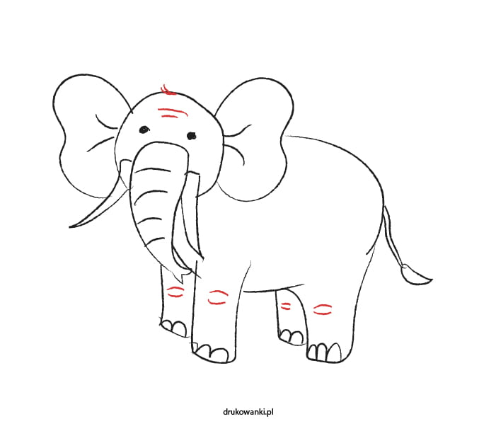 jak narysować słonika
