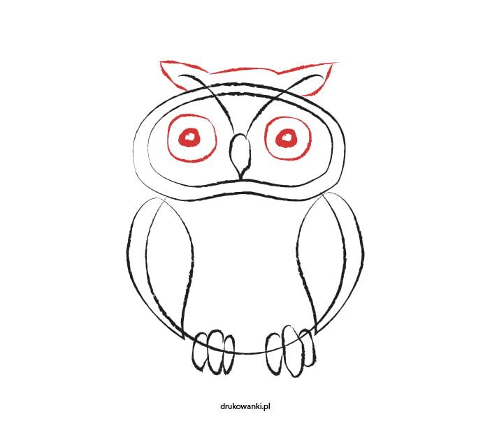 jak narysować sowę instrukcja