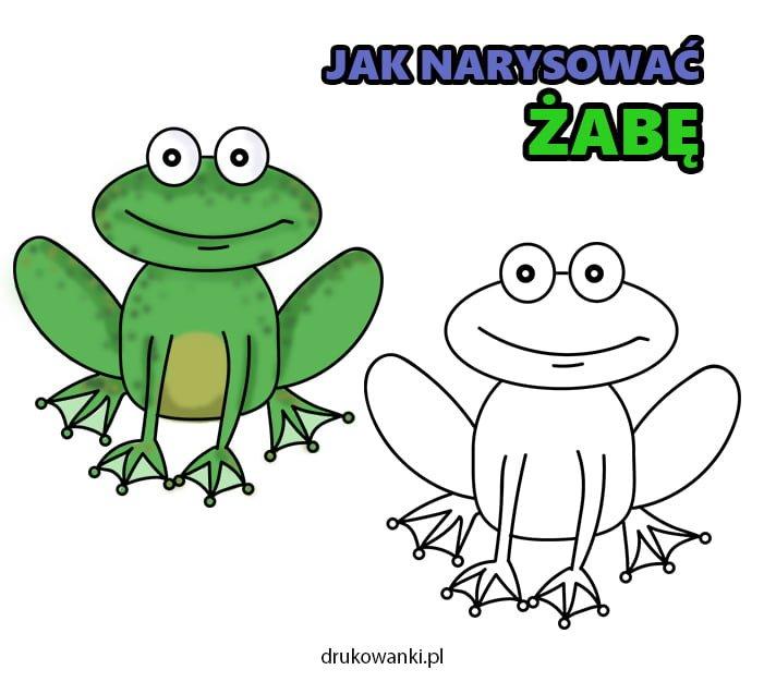 jak narysować żabę