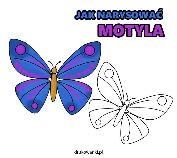 jak narysować motyla instrukcja dla dzieci