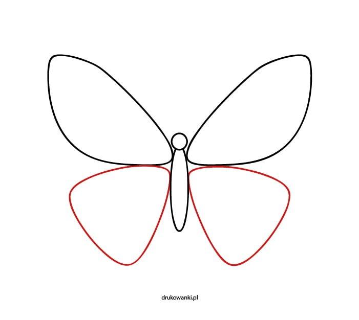 motyl instrukcja rysowania