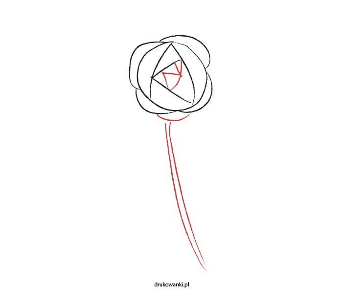 jak narysować różę