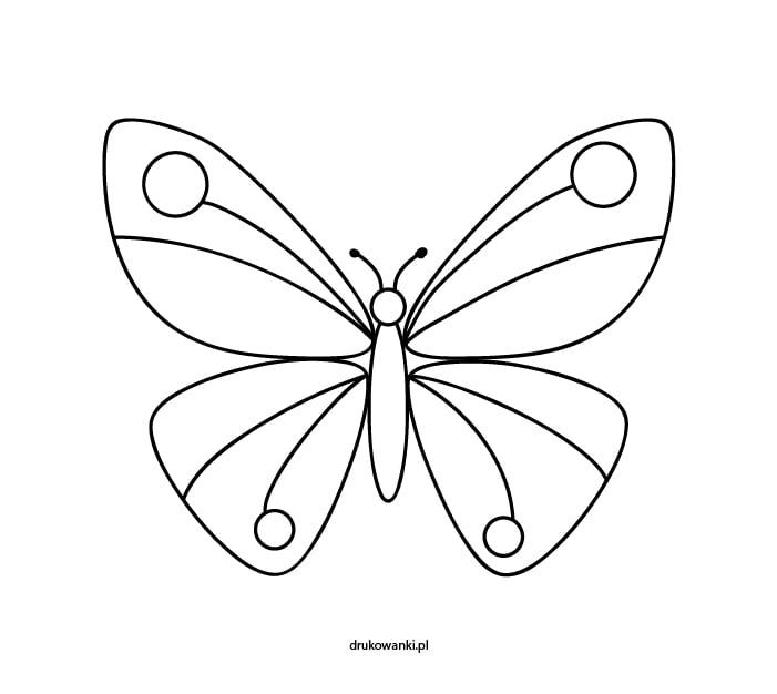 motyl kolorowanka dla dzieci