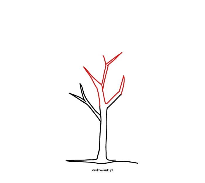 rysowanie drzewa