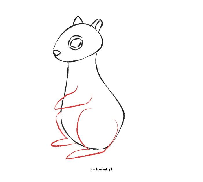 instrukcja jak narysować wiewiórkę