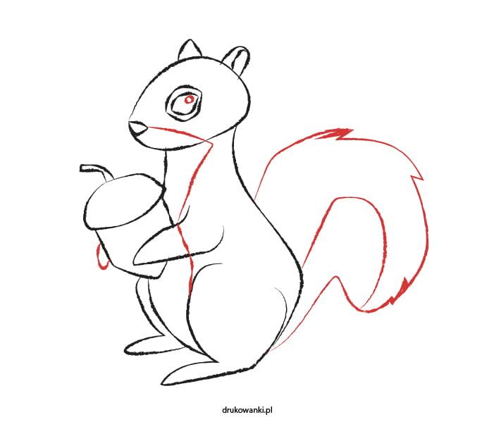 rysowanie wiewiórki instrukcja dla dzieci