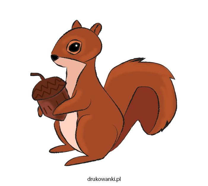 rysunek wiewiórki dla dzieci
