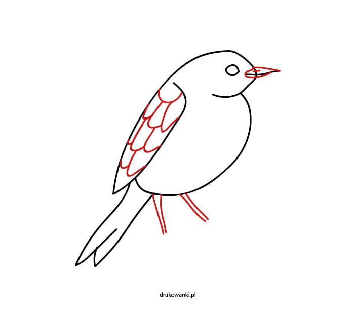 ptaszek rysunek