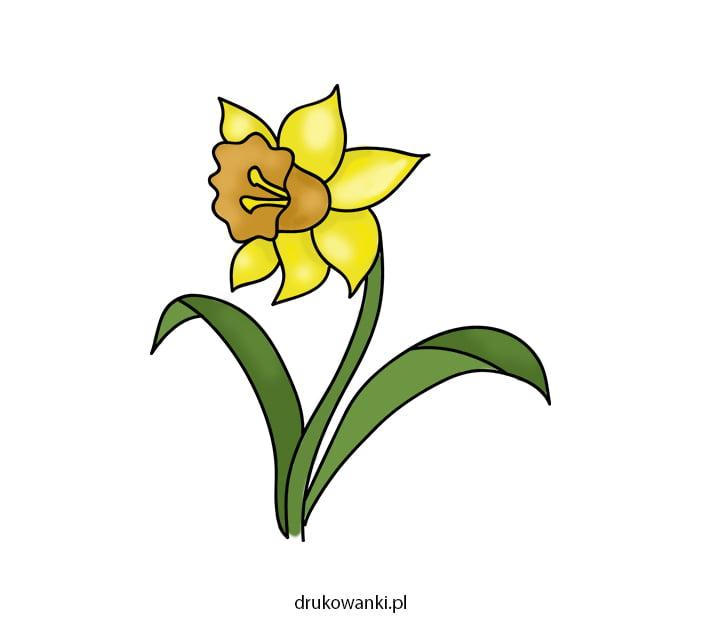 jak narysować wiosenne kwiaty