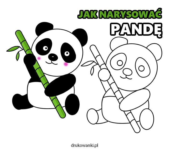 panda instrukcja jak narysować