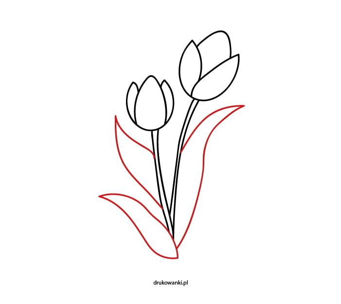 rysunek tulipanów dla dzieci