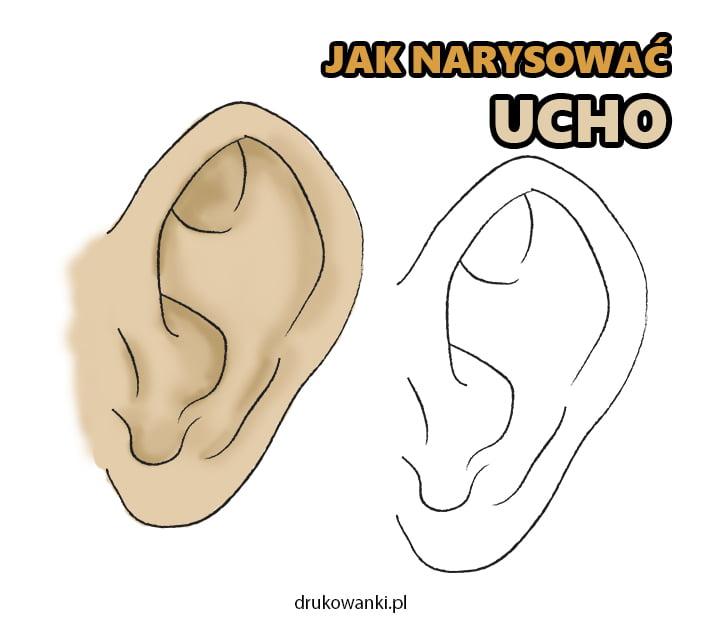 jak narysować ucho instrukcja