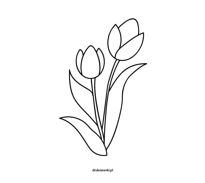 tulipany kolorowanka