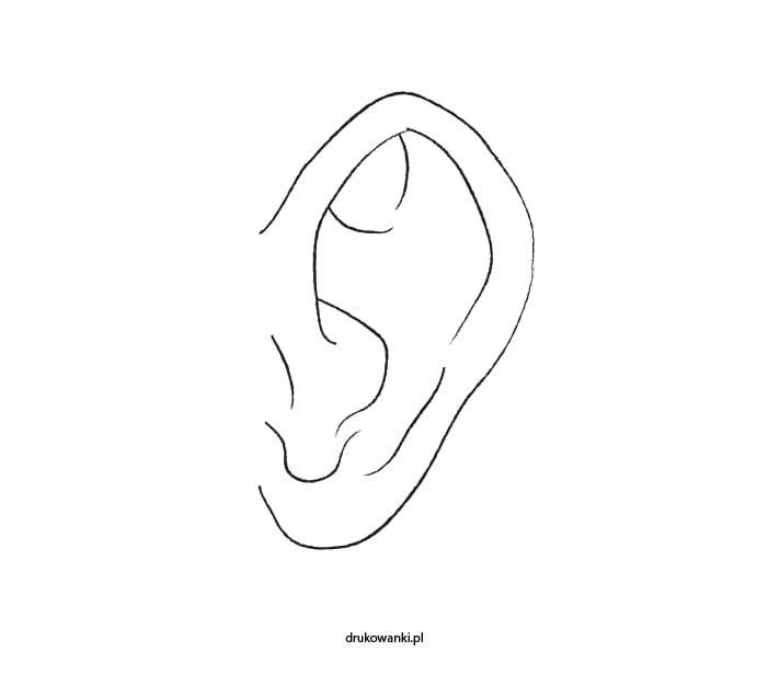 ucho kolorowanka dla dzieci