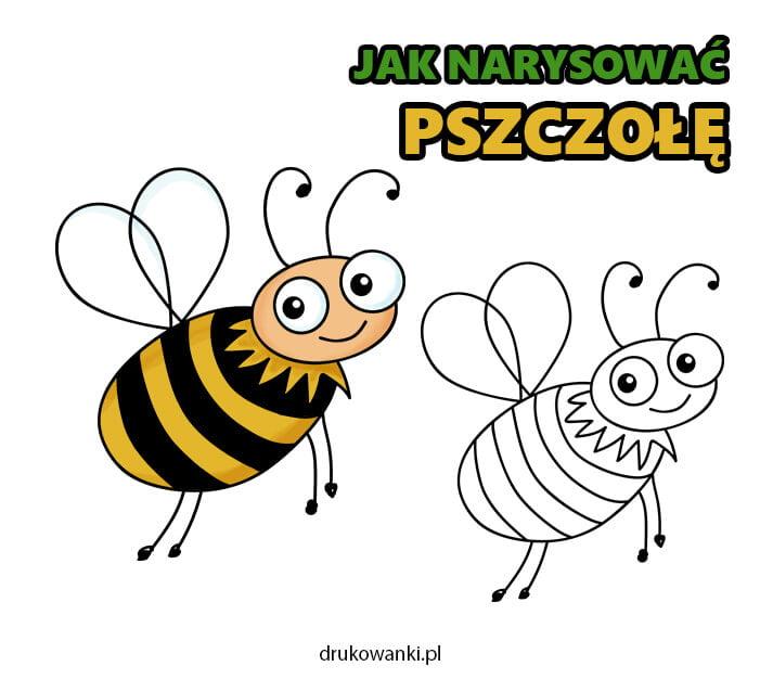 instrukcja rysowania pszczółki krok po kroku