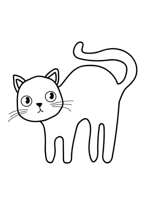 kotek rysunek koci grzbiet