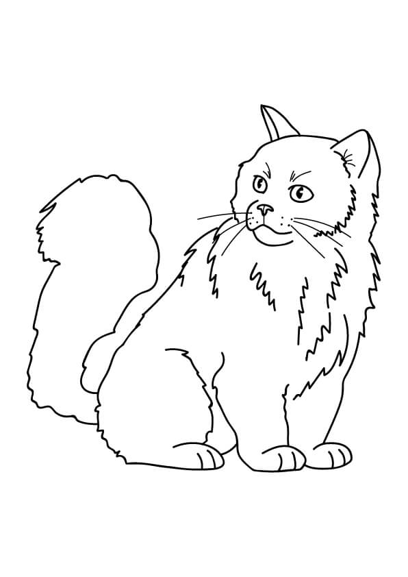 rysunki kotów kolorowanka