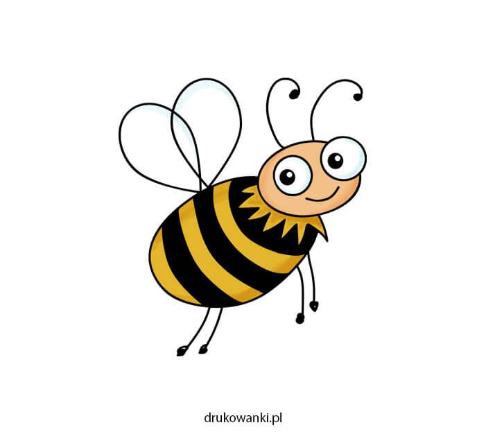 jak narysować pszczołę