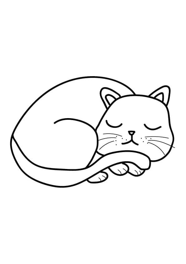 śpiący kotek rysunek dla dzieci