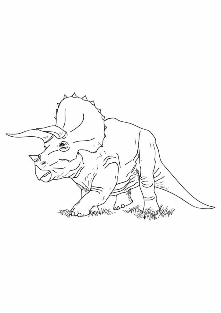 rysunek triceratopsa dinozaura