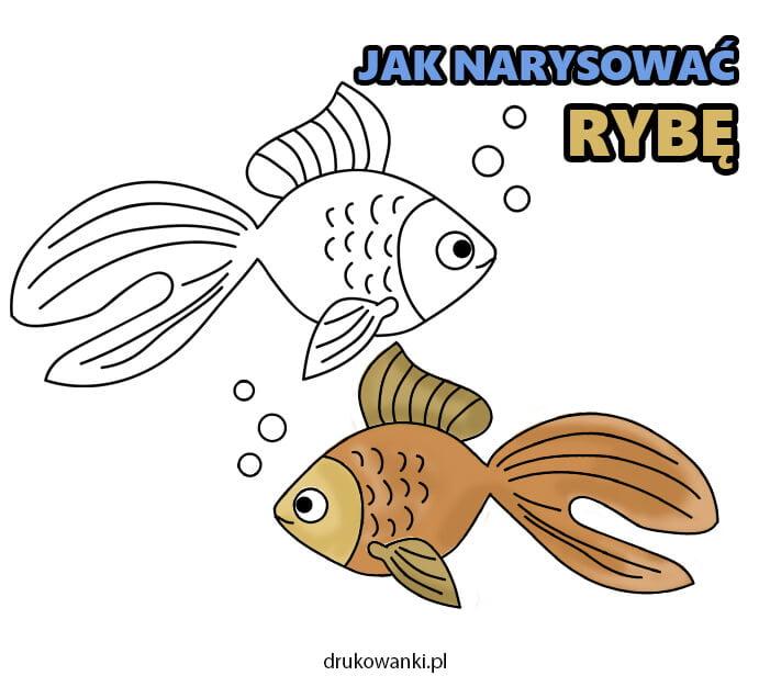 jak narysować rybkę instrukcja