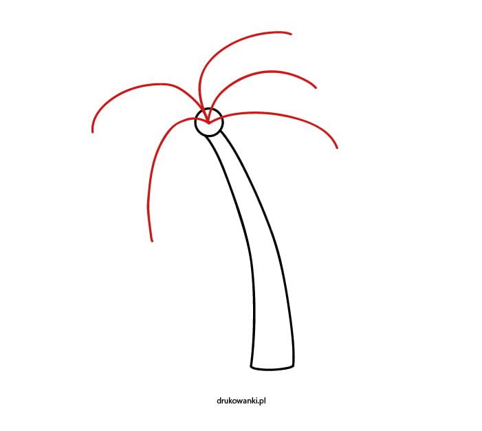 jak narysować palmę