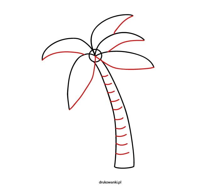 jak narysować liście palmy