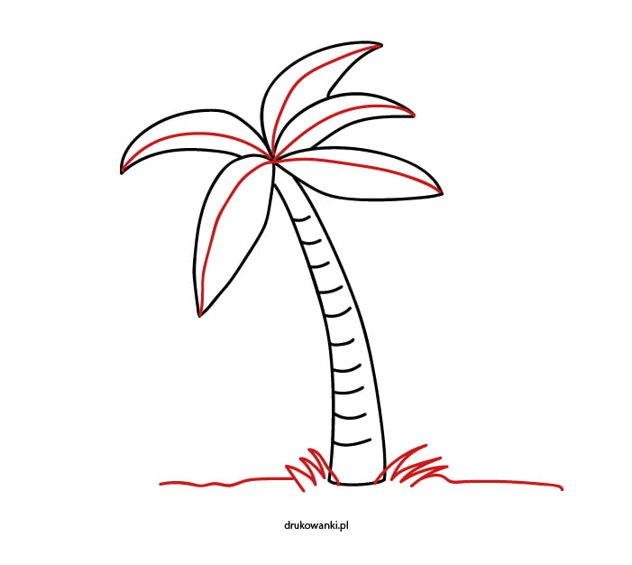 palma prosty rysunek
