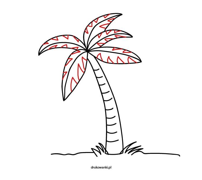 jak narysować palmę kokosową