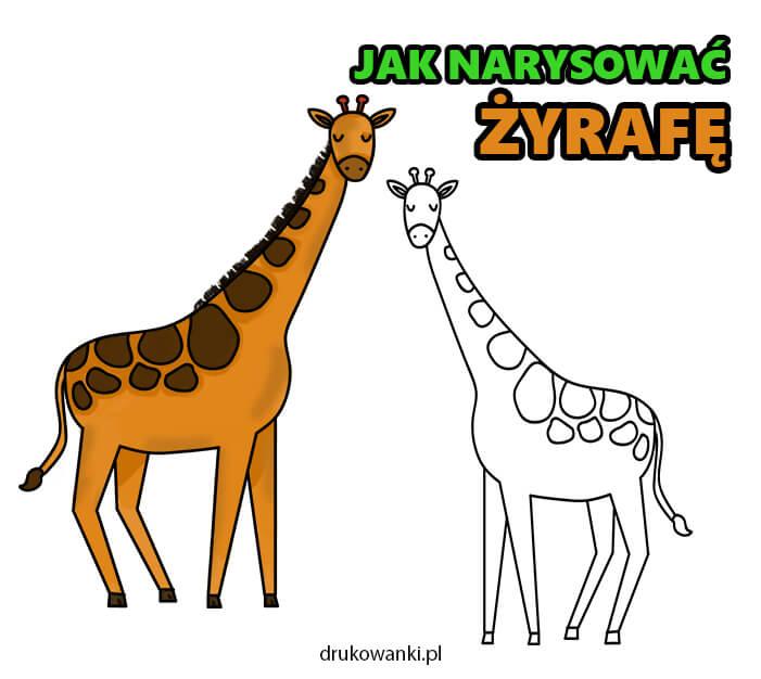 jak narysować żyrafę instrukcja