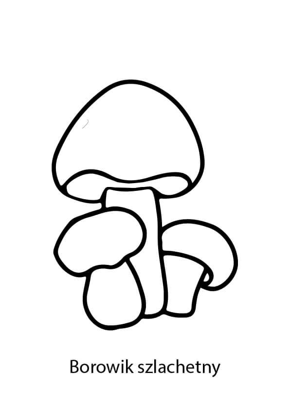 borowik grzyb kolorowanka