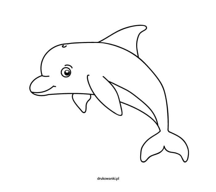 kolorowanka delfin
