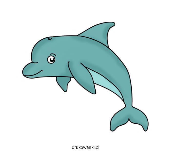 kolrowy rysunek delfin