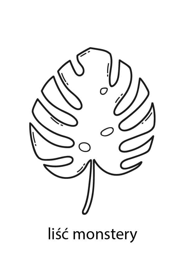 monstera liście szablon