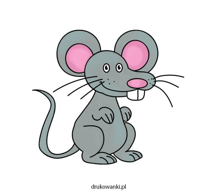 kolorowy rysunek myszy