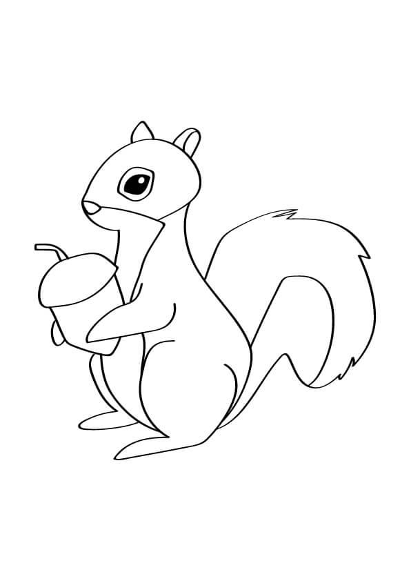 jesienne kolorowanki wiewiórka
