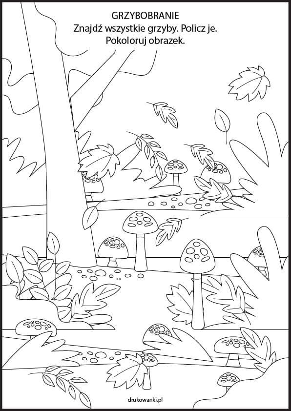 grzybobranie rysunek ćwiczenie