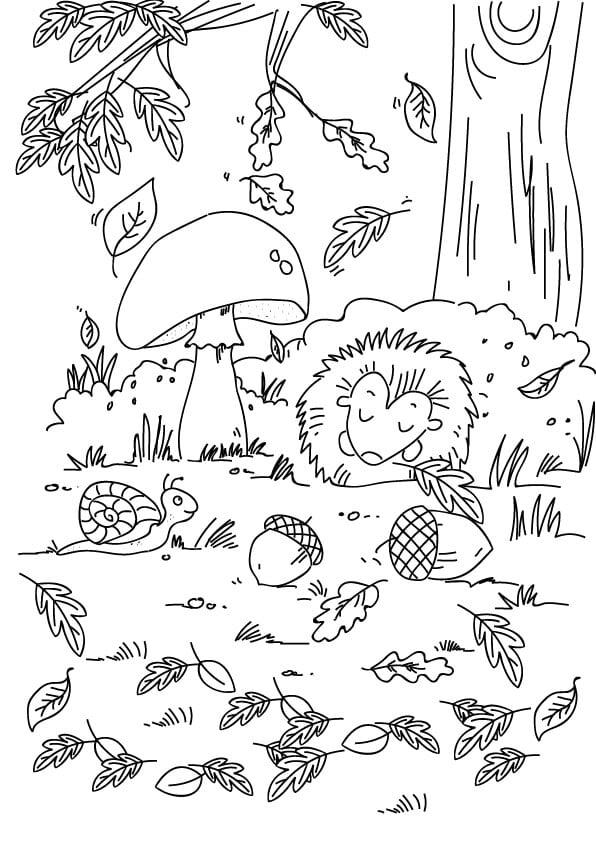 rysunek jesień w lesie