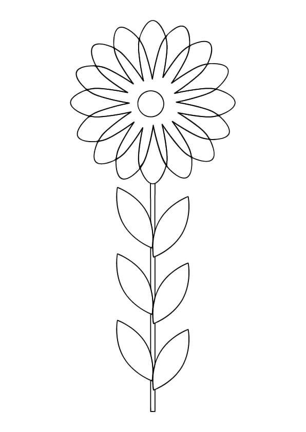 kolorowanki kwiatów szablon