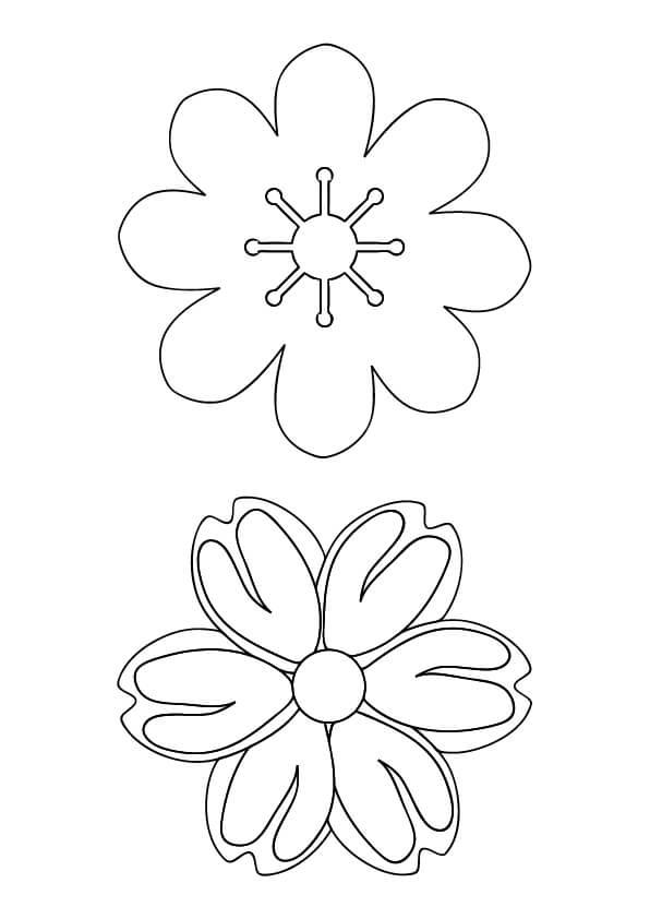 darmowe szablony kwiatów do druku